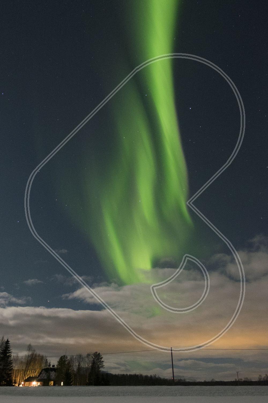 Norwegian Aurora